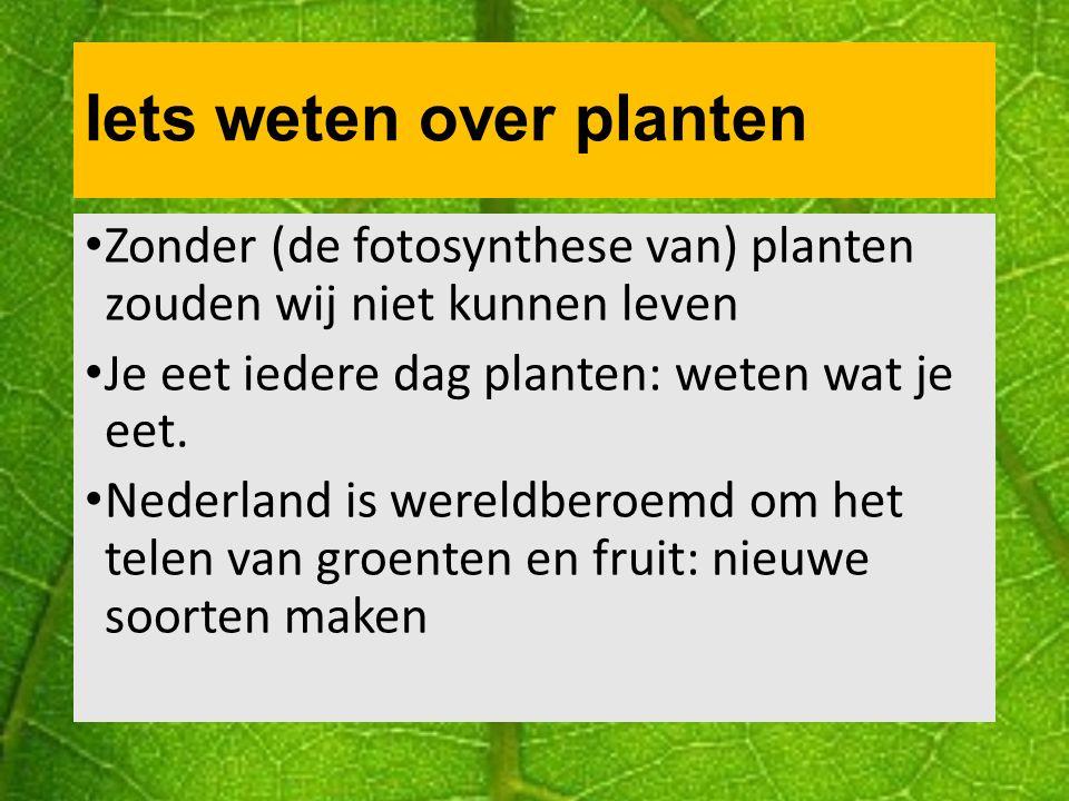 Iets weten over planten