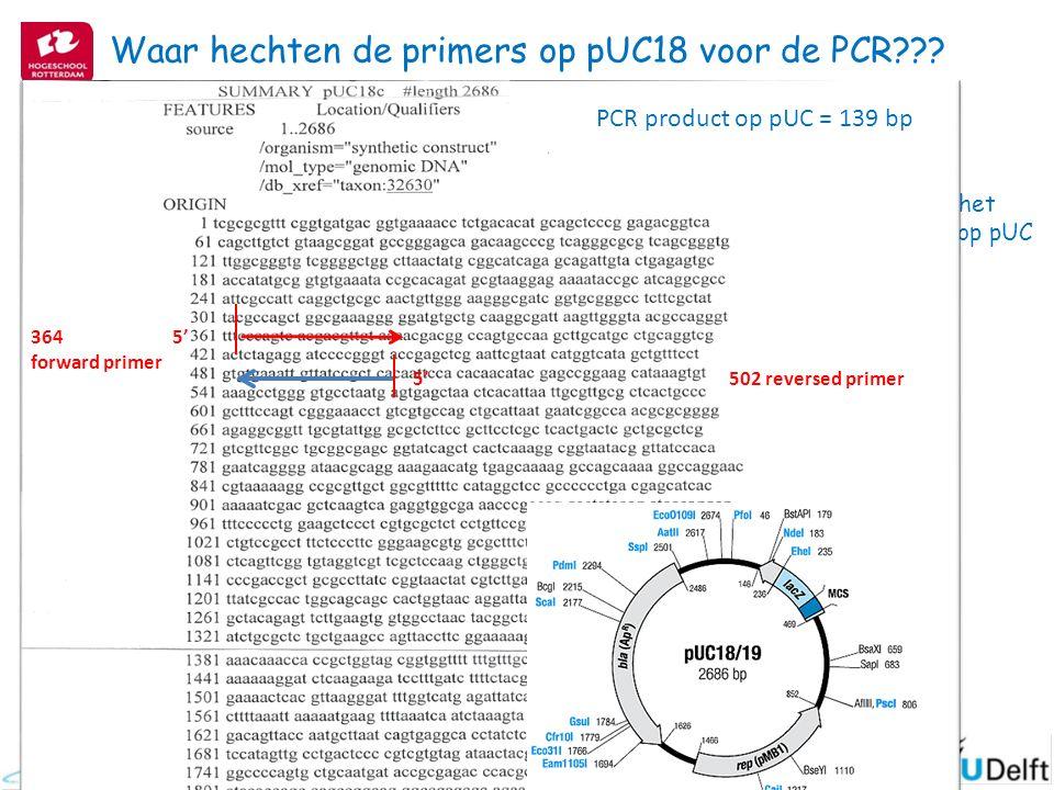 Waar hechten de primers op pUC18 voor de PCR