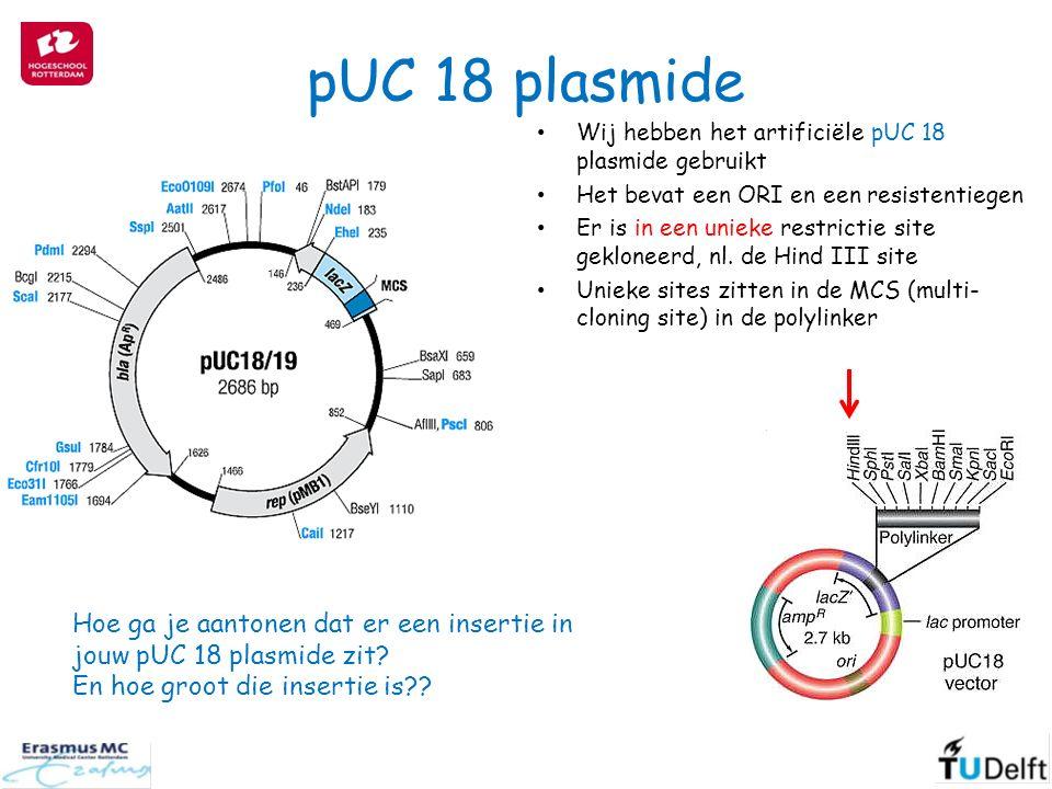 pUC 18 plasmide Hoe ga je aantonen dat er een insertie in