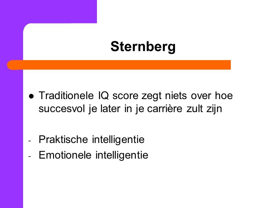 Sternberg Traditionele IQ score zegt niets over hoe succesvol je later in je carrière zult zijn. Praktische intelligentie.