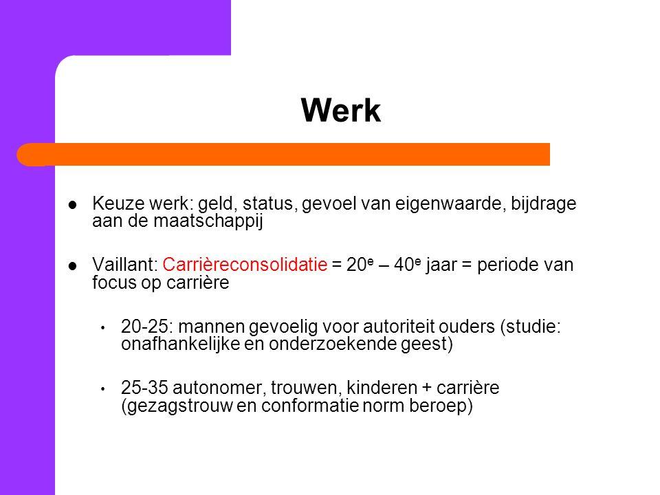 Werk Keuze werk: geld, status, gevoel van eigenwaarde, bijdrage aan de maatschappij.