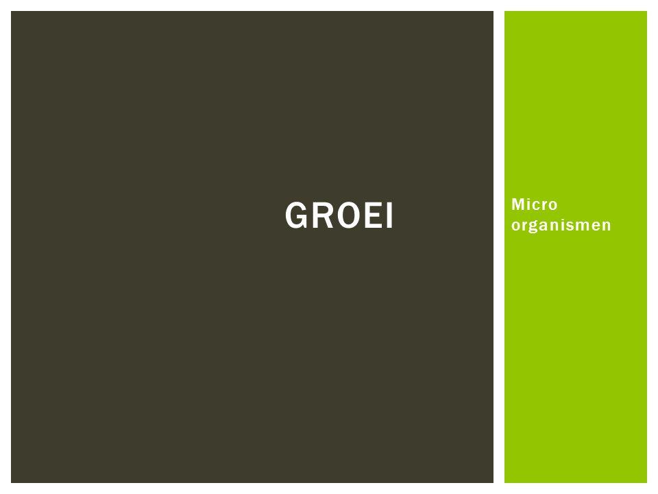 Groei Micro organismen