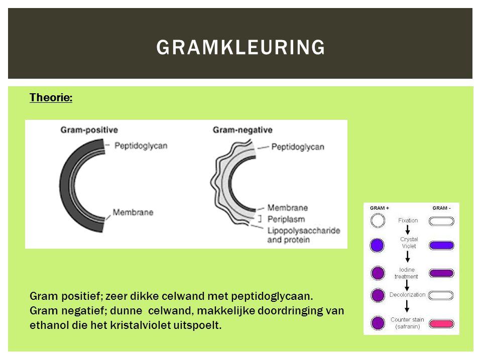 Gramkleuring Theorie: