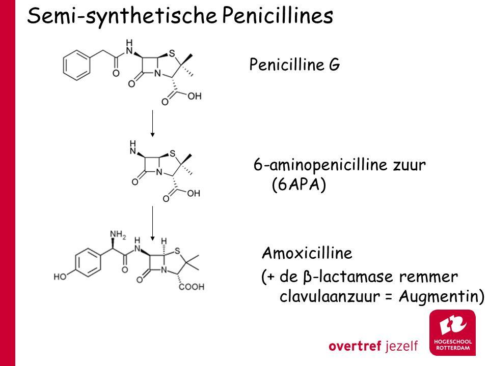 Semi-synthetische Penicillines