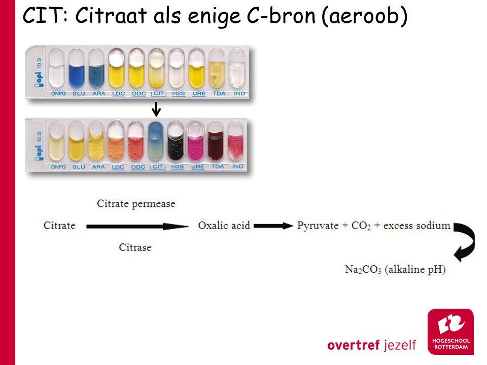CIT: Citraat als enige C-bron (aeroob)