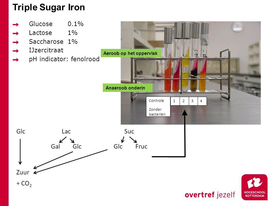 Triple Sugar Iron Glucose 0.1% Lactose 1% Saccharose 1% IJzercitraat