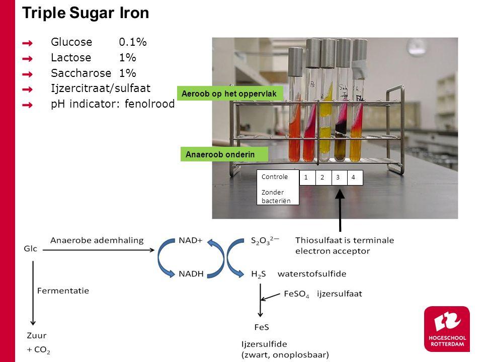 Triple Sugar Iron Glucose 0.1% Lactose 1% Saccharose 1%
