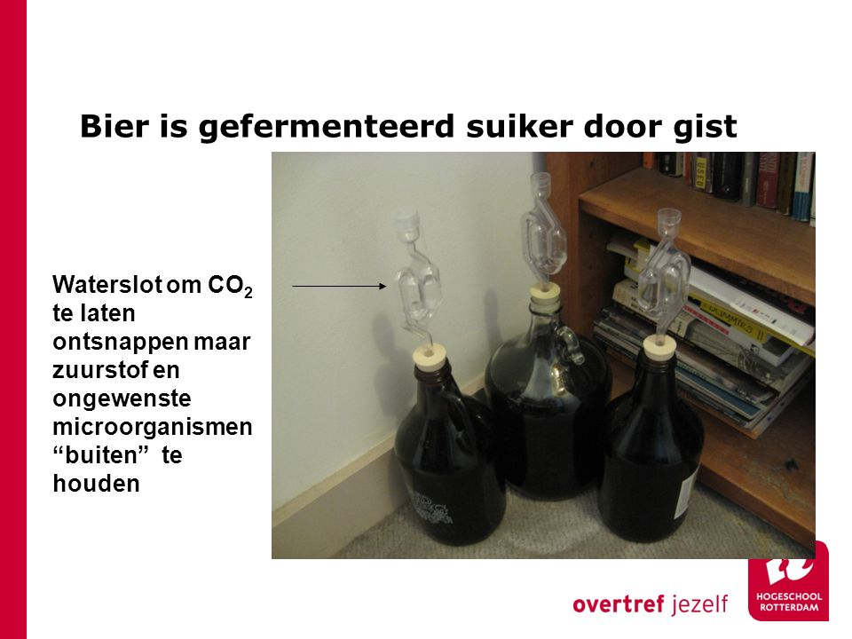 Bier is gefermenteerd suiker door gist