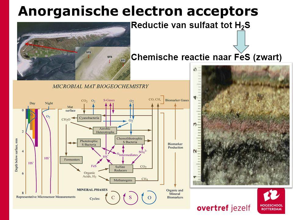 Anorganische electron acceptors
