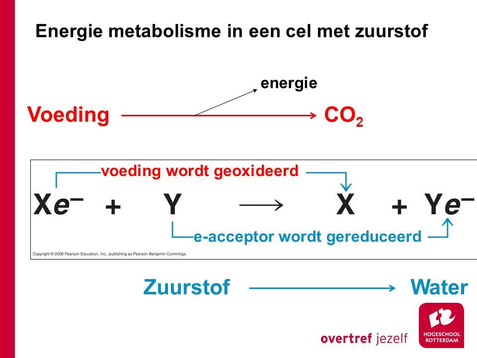 Voeding CO2 Zuurstof Water Energie metabolisme in een cel met zuurstof