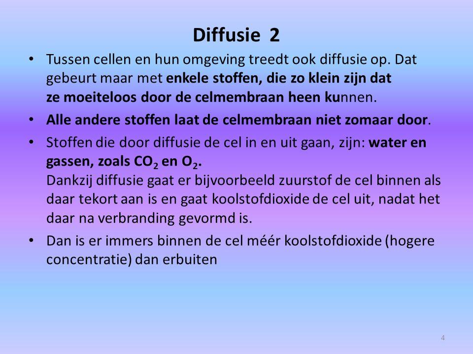 Diffusie 2