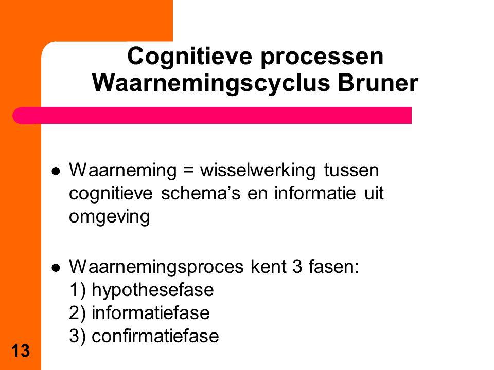 Cognitieve processen Waarnemingscyclus Bruner