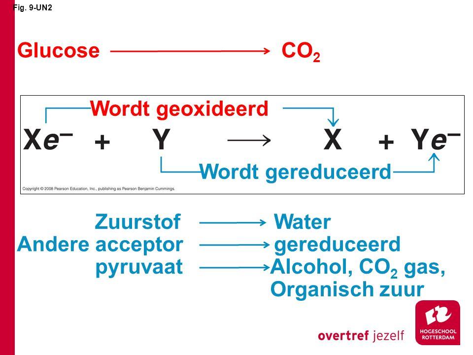 Glucose CO2 Wordt geoxideerd Wordt gereduceerd Zuurstof Water