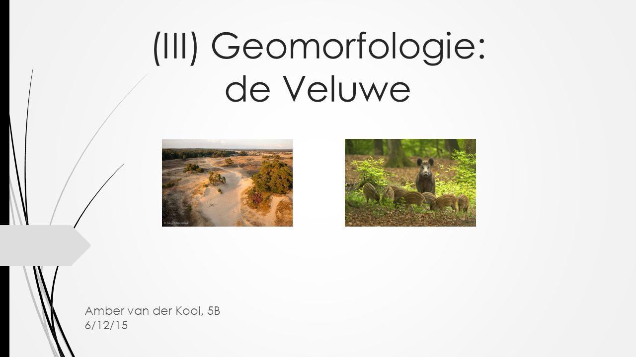 (III) Geomorfologie: de Veluwe