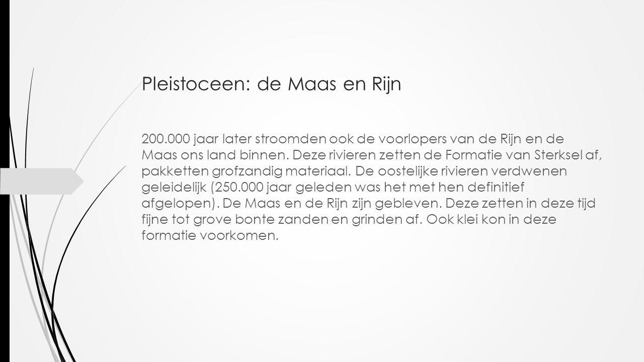 Pleistoceen: de Maas en Rijn