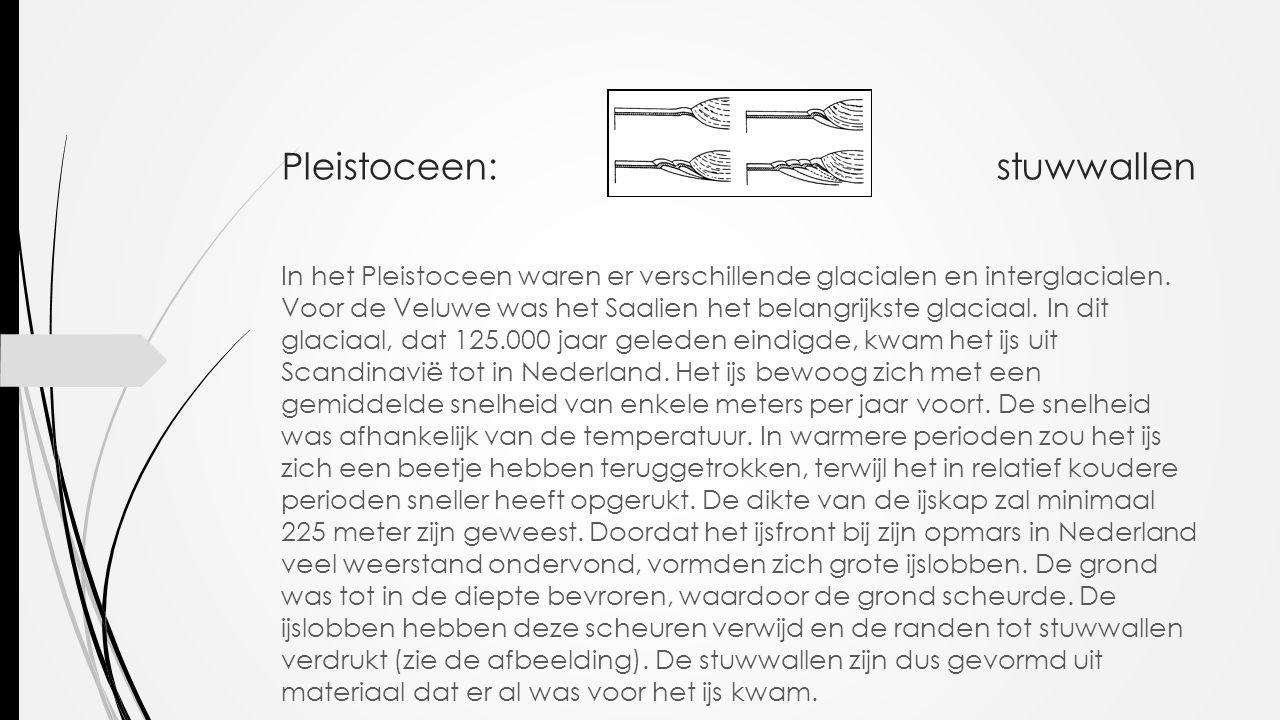Pleistoceen: stuwwallen