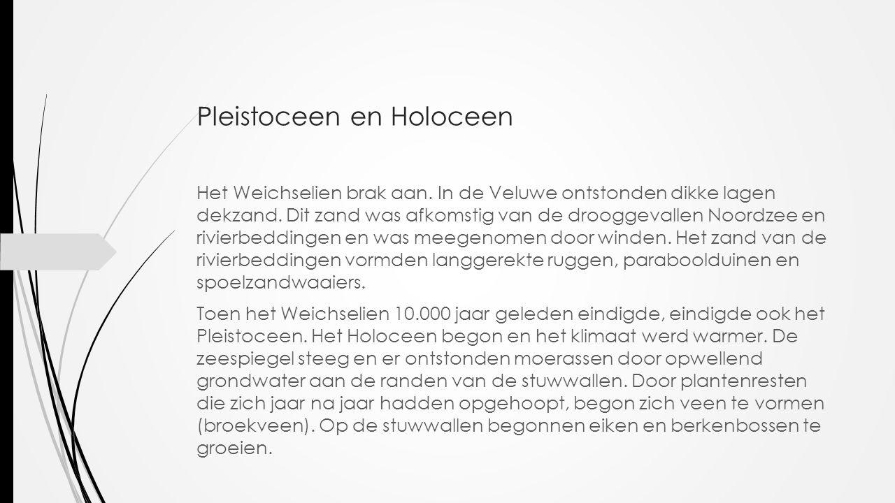 Pleistoceen en Holoceen