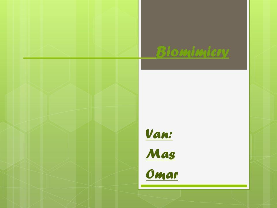 Biomimicry Van: Mas Omar