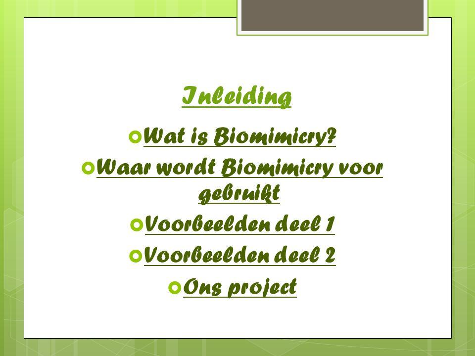 Waar wordt Biomimicry voor gebruikt