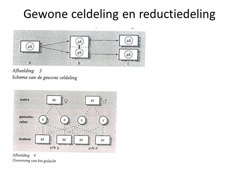 Gewone celdeling en reductiedeling