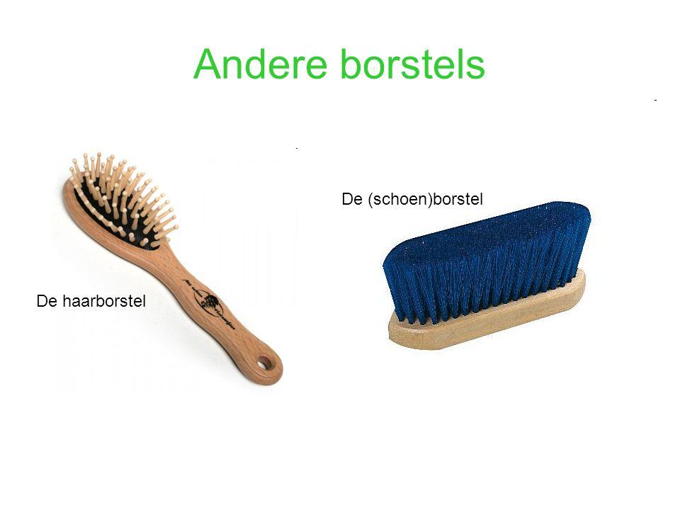 Andere borstels De (schoen)borstel De haarborstel