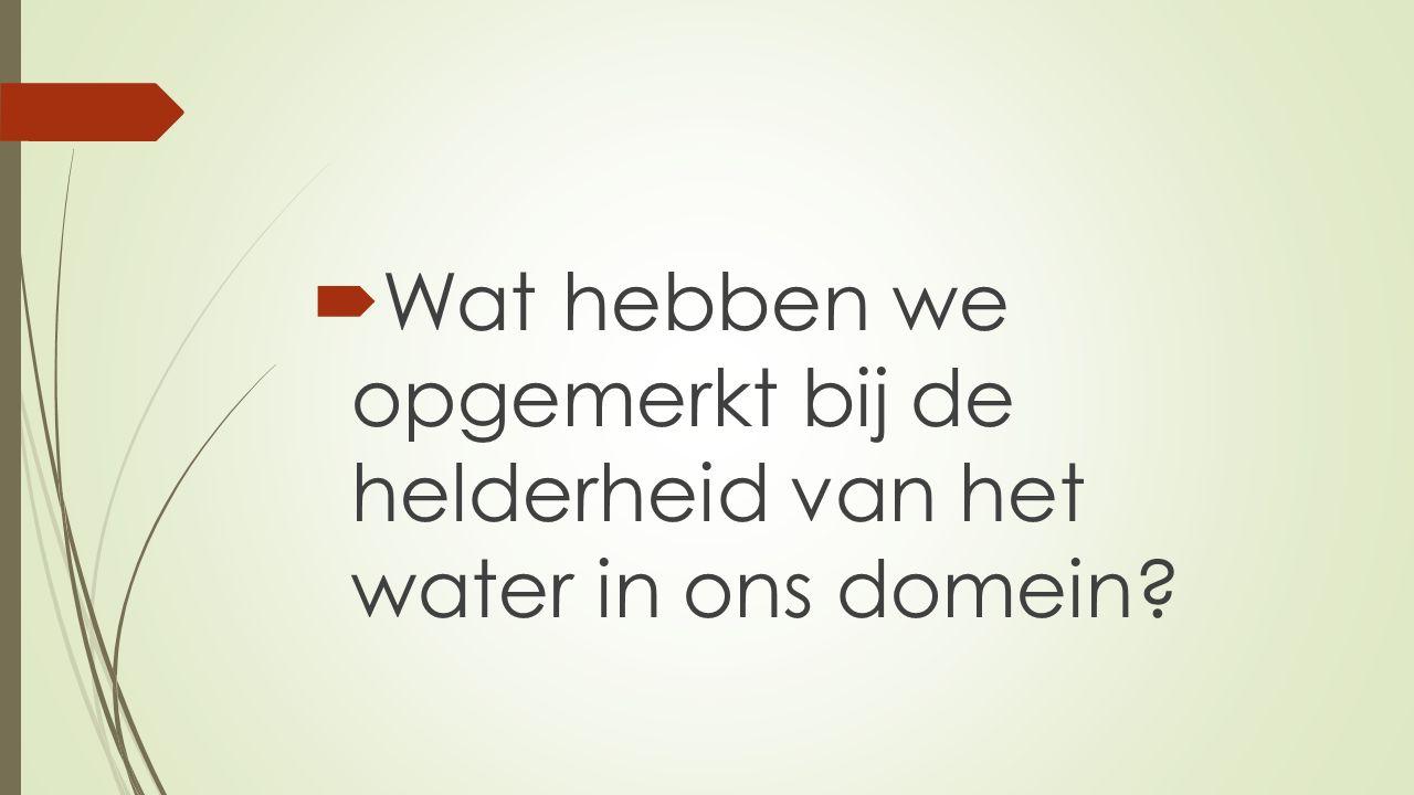 Wat hebben we opgemerkt bij de helderheid van het water in ons domein