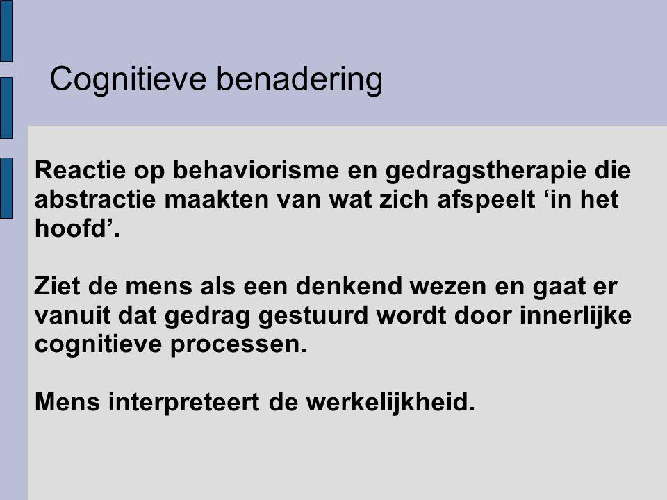 Cognitieve benadering
