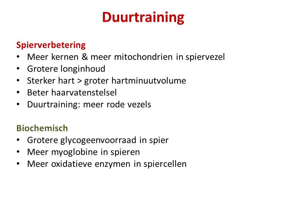 Duurtraining Spierverbetering