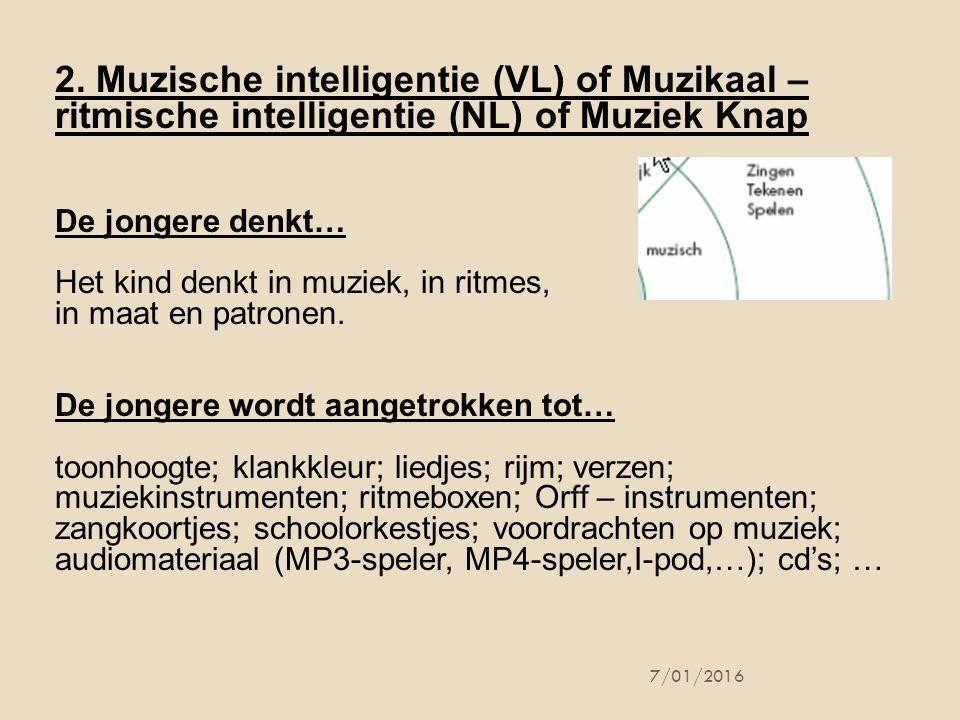 2. Muzische intelligentie (VL) of Muzikaal – ritmische intelligentie (NL) of Muziek Knap