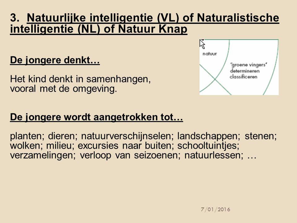 Natuurlijke intelligentie (VL) of Naturalistische