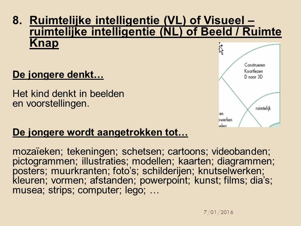 Ruimtelijke intelligentie (VL) of Visueel – ruimtelijke intelligentie (NL) of Beeld / Ruimte Knap