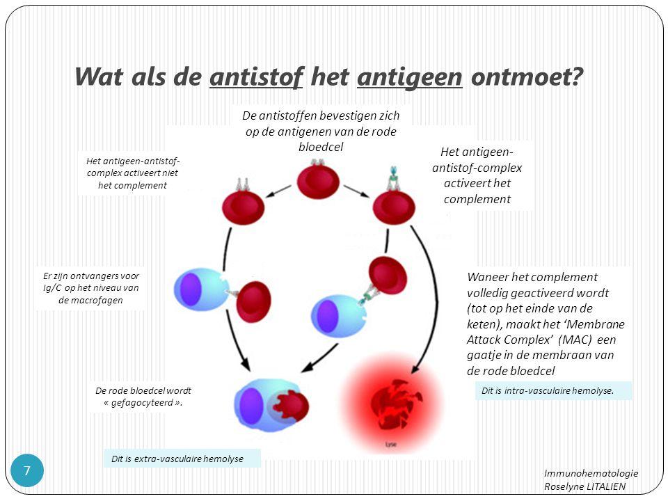 Wat als de antistof het antigeen ontmoet