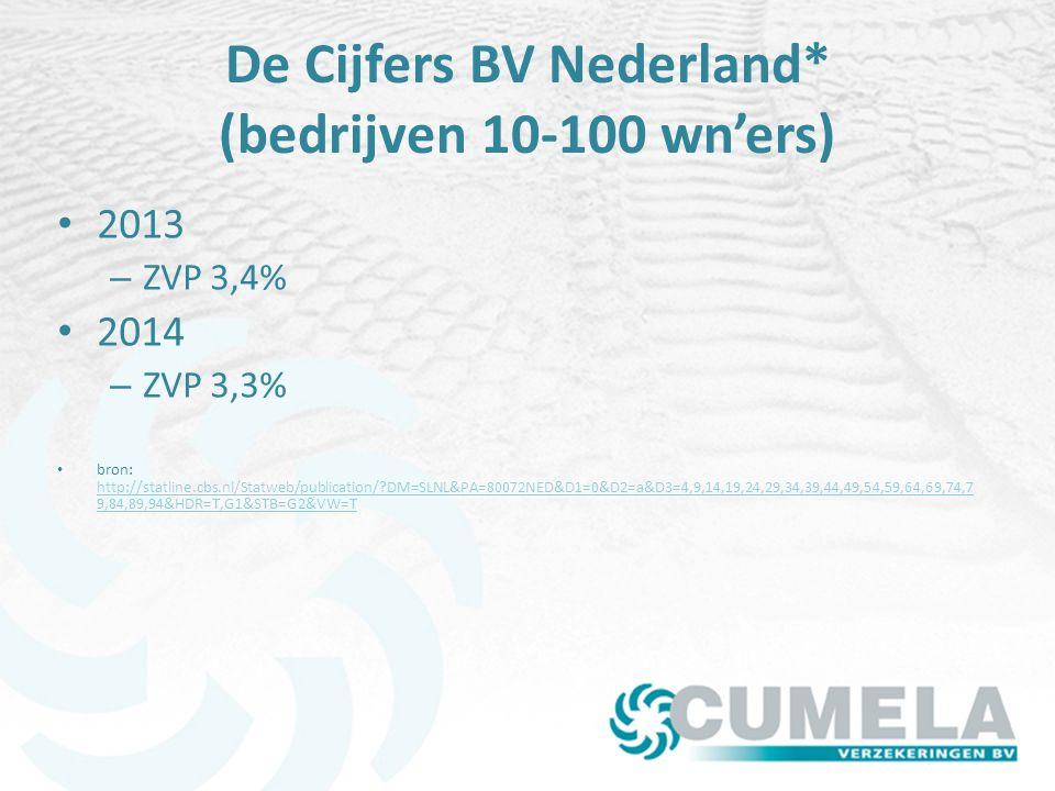 De Cijfers BV Nederland* (bedrijven 10-100 wn'ers)