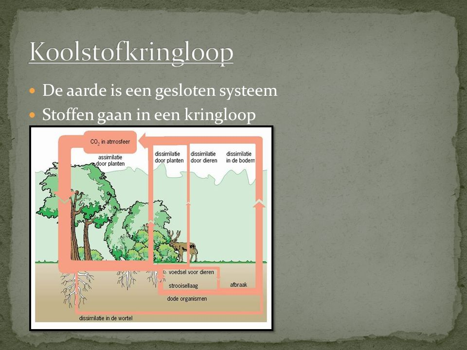 Koolstofkringloop De aarde is een gesloten systeem