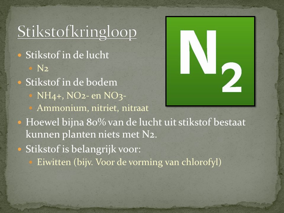 Stikstofkringloop Stikstof in de lucht Stikstof in de bodem