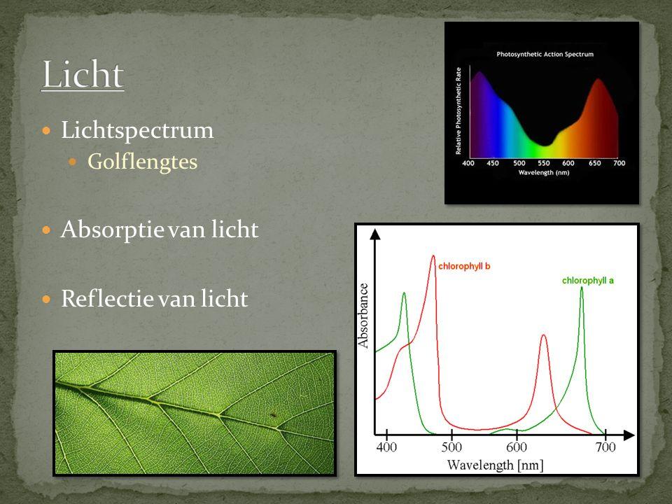 Licht Lichtspectrum Absorptie van licht Reflectie van licht
