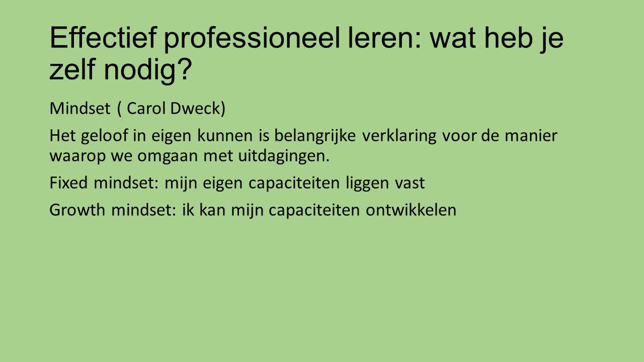 Effectief professioneel leren: wat heb je zelf nodig