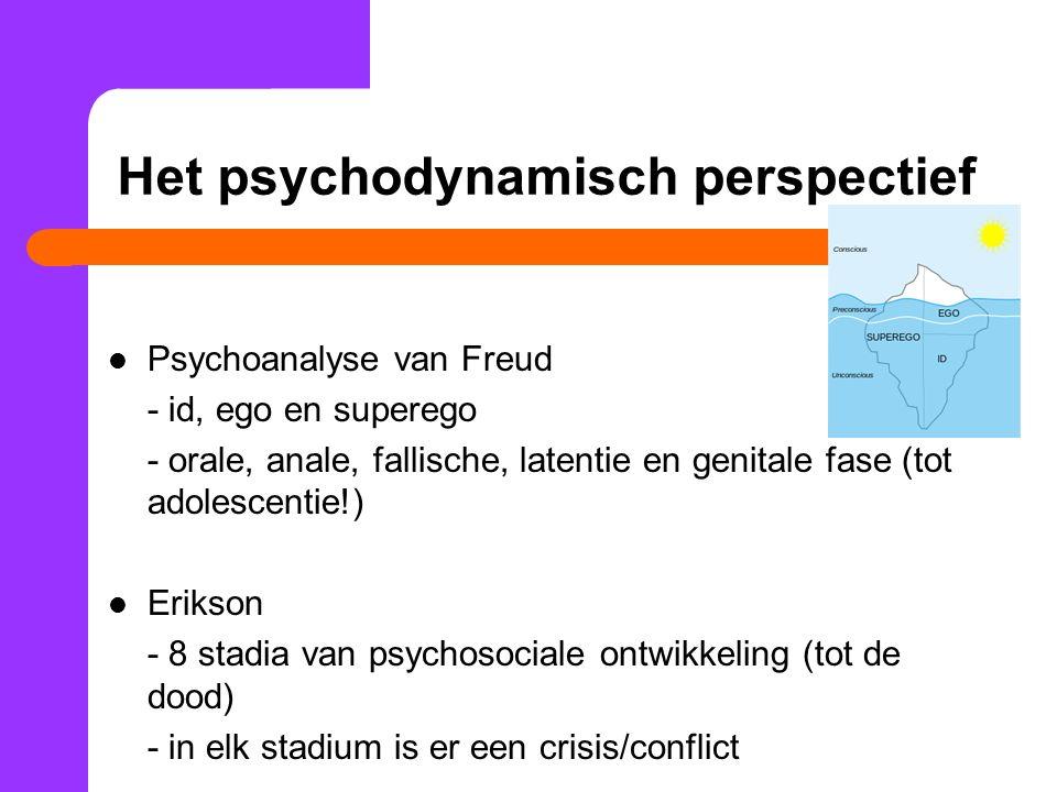 Het psychodynamisch perspectief