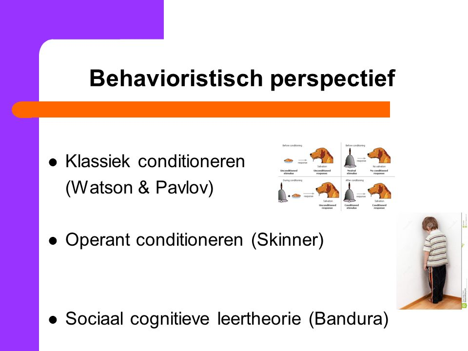 Behavioristisch perspectief