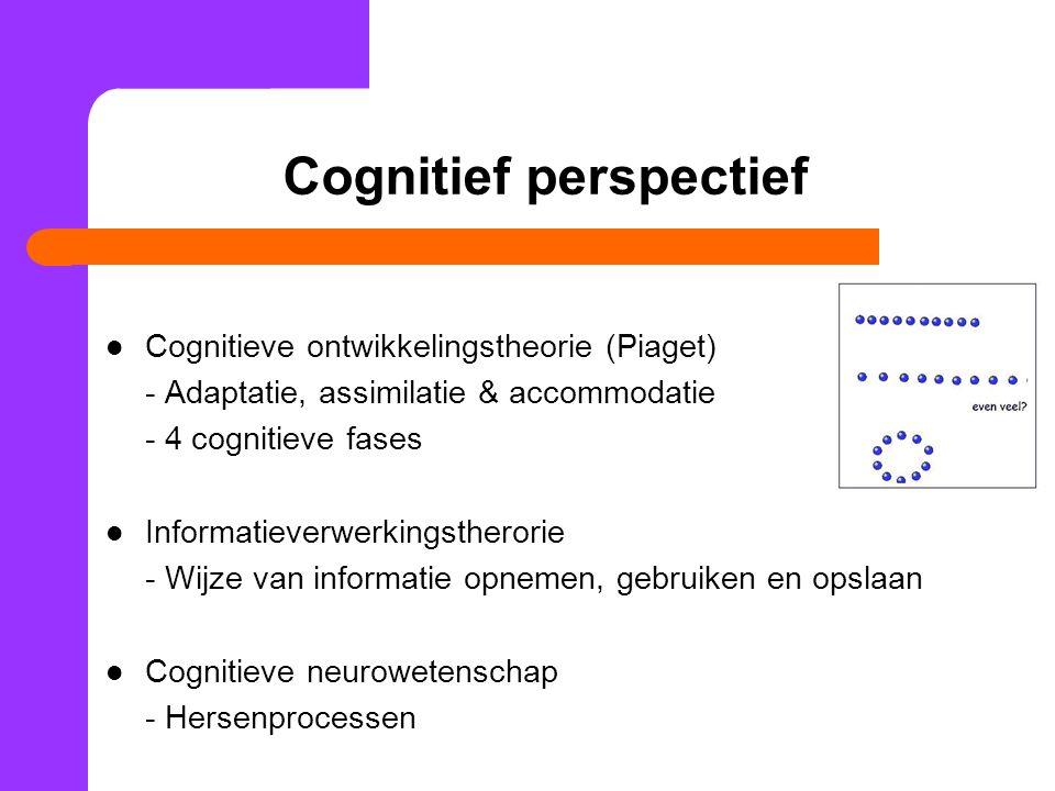 Cognitief perspectief