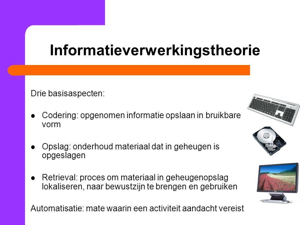 Informatieverwerkingstheorie