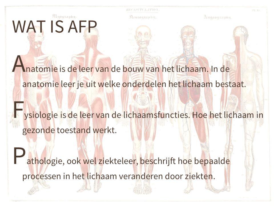 WAT IS AFP Anatomie is de leer van de bouw van het lichaam. In de anatomie leer je uit welke onderdelen het lichaam bestaat.