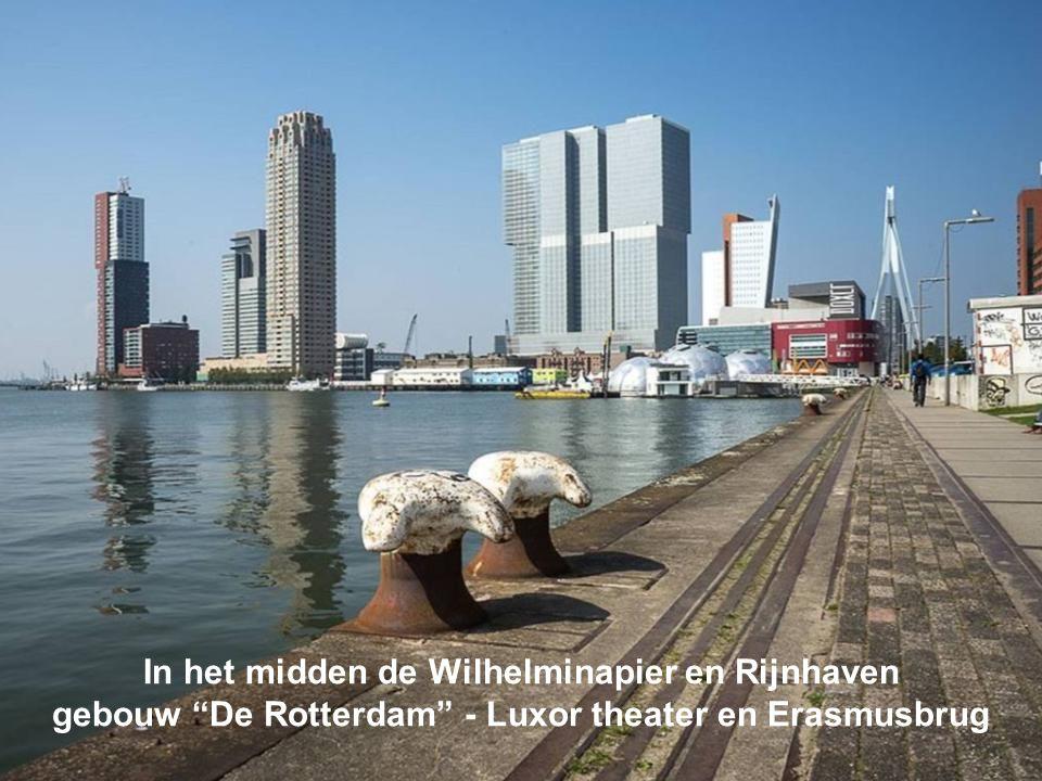 In het midden de Wilhelminapier en Rijnhaven