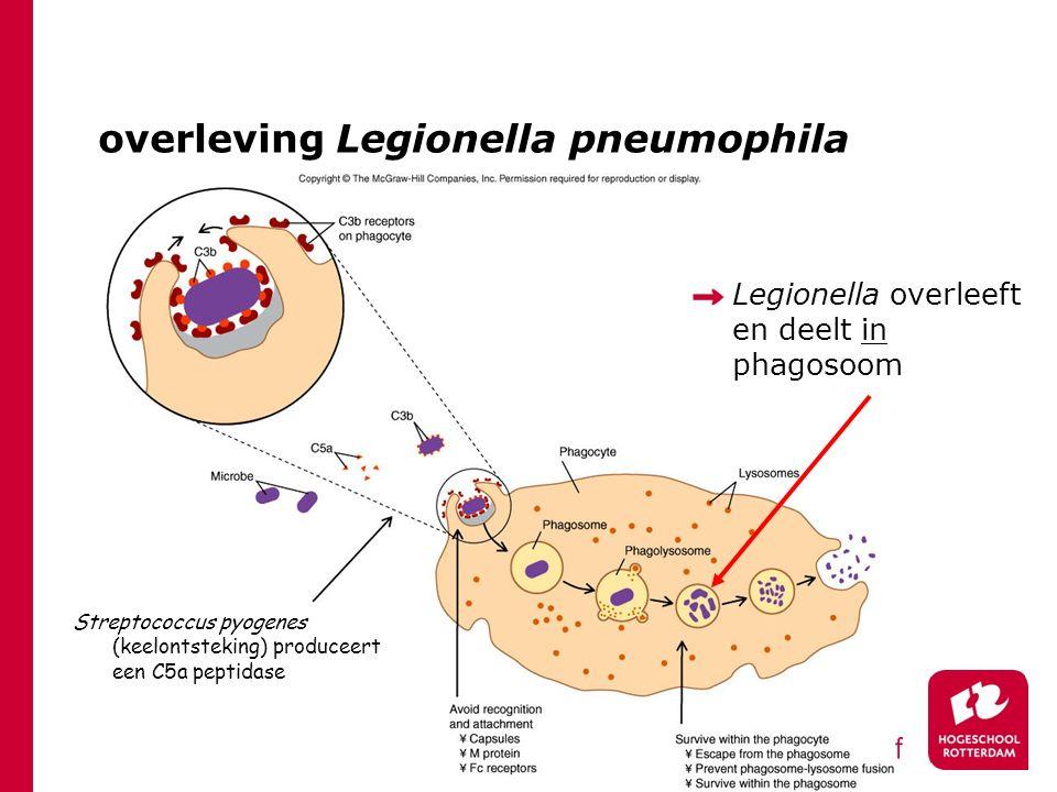overleving Legionella pneumophila