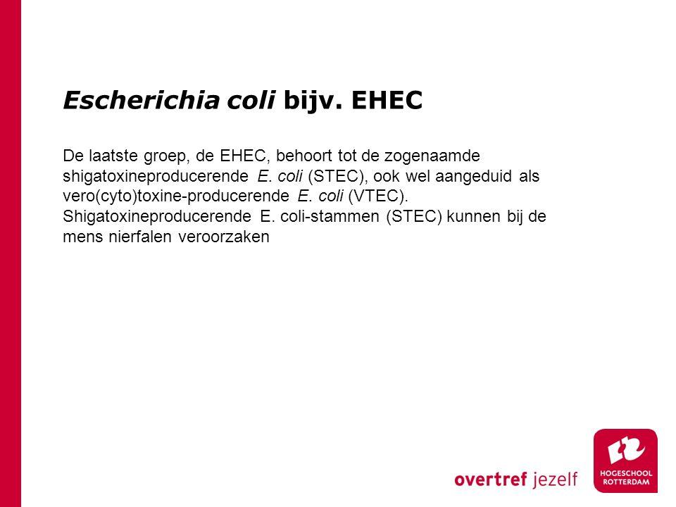 Escherichia coli bijv. EHEC