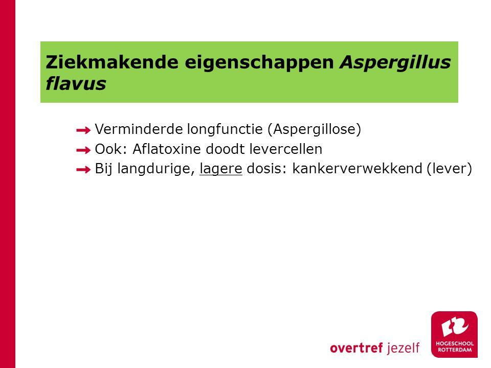 Ziekmakende eigenschappen Aspergillus flavus