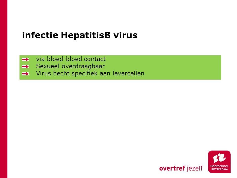 infectie HepatitisB virus
