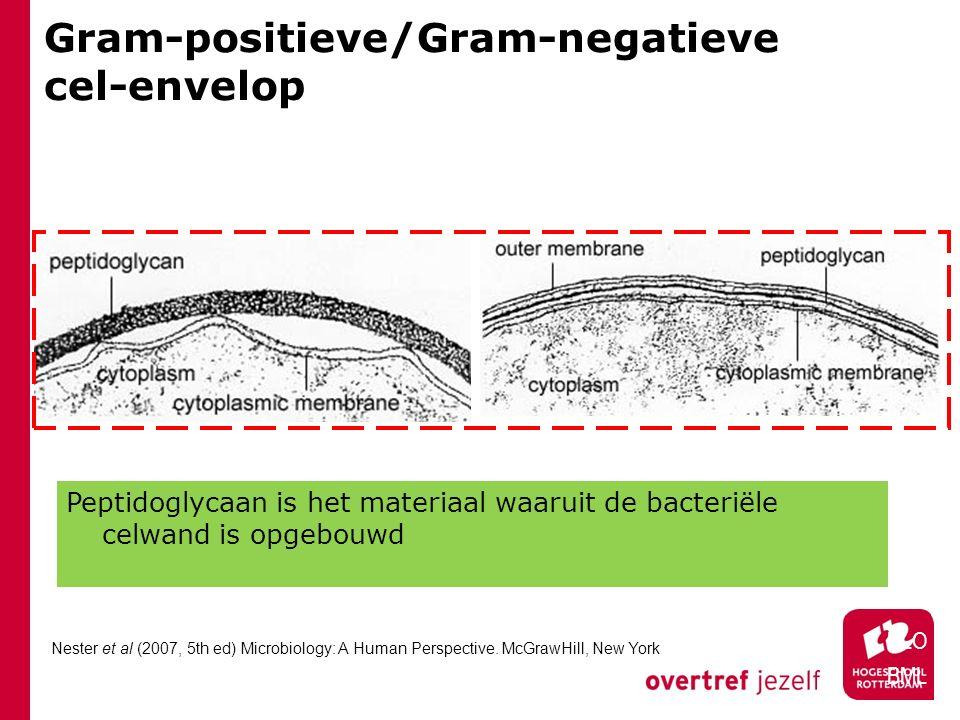 Gram-positieve/Gram-negatieve cel-envelop