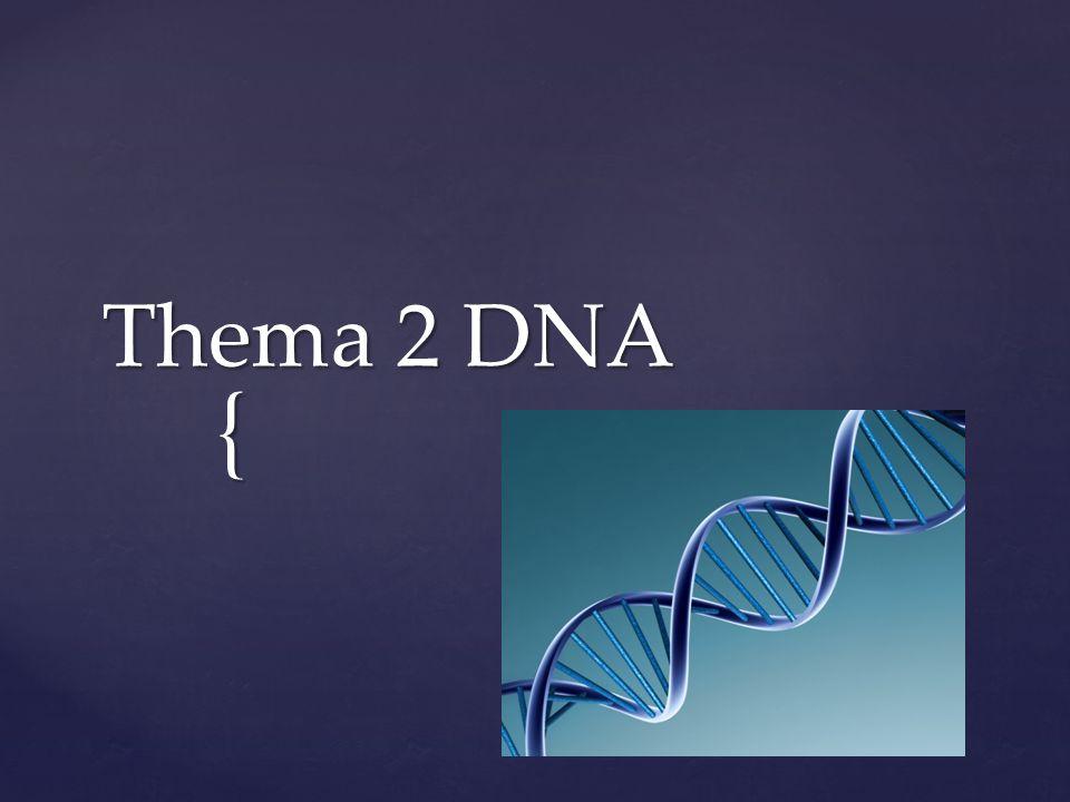 Thema 2 DNA