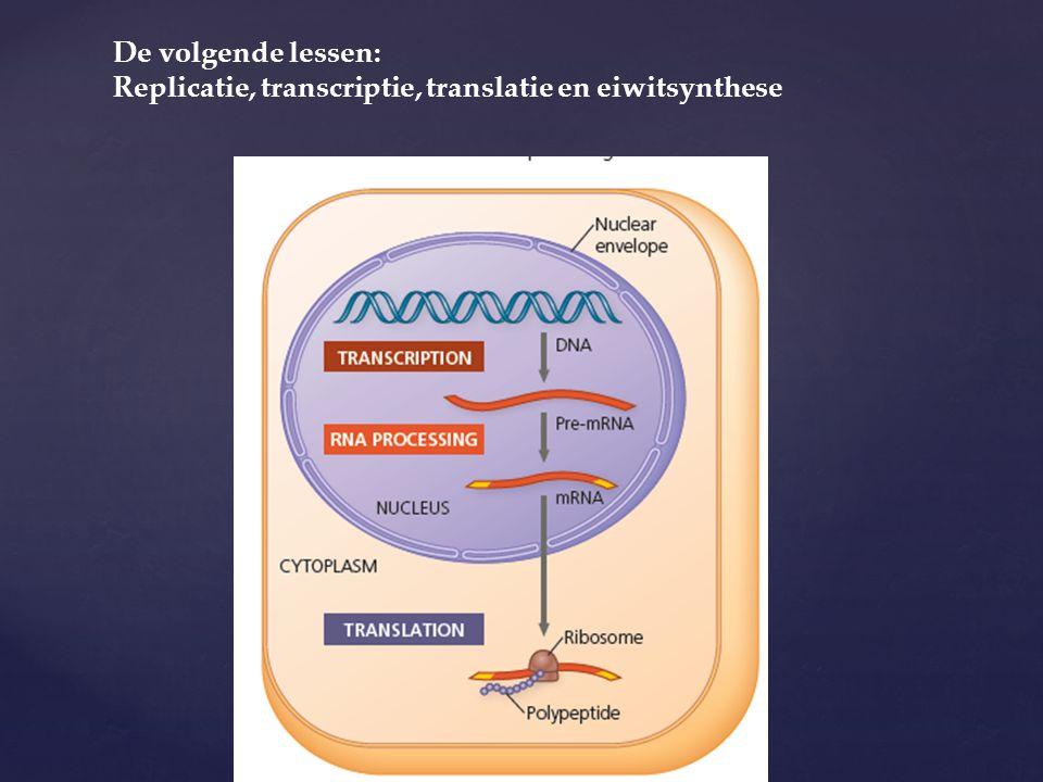 De volgende lessen: Replicatie, transcriptie, translatie en eiwitsynthese